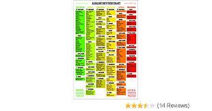 Alkaline Food Chart Set 1 Fridge Poster 1 Shopping Guide