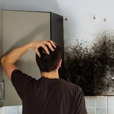 Got allergies? Mould in your home might be the problem   Health24