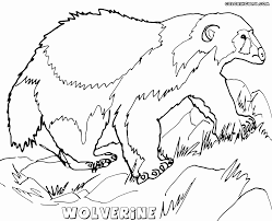 Small Picture Wolverine coloring pages Coloring pages to download and print