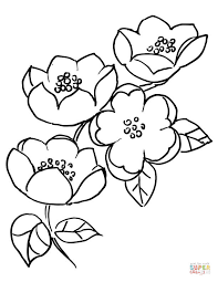Small Picture Apple Blossom Branch coloring page Free Printable Coloring Pages