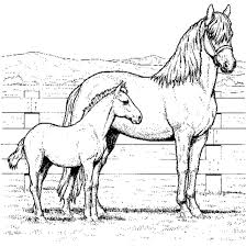 Small Picture Horse Coloring Page chuckbuttcom