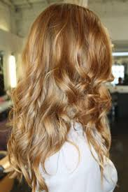 Honey Blonde Hair Color With Highlights