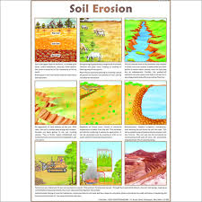 soil conservation essay soil conservation essay essay on soil erosion factors types causes and effects
