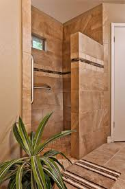 Best  Tub To Shower Conversion Ideas On Pinterest - Remodeling bathrooms