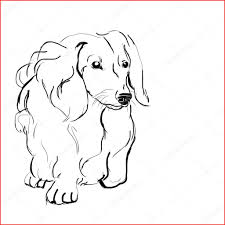 Dachshund Coloring Pages With Dachshund Drawing 161040 Dachshund