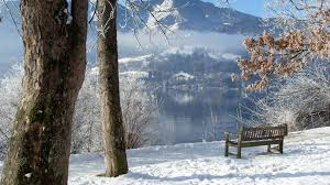 hd winter nature wallpapers. Contemporary Winter Download 1920x1080 Inside Hd Winter Nature Wallpapers L