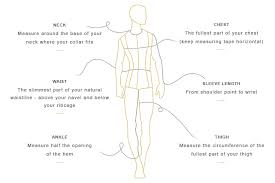 Arm Length Size Chart Pauw Size Chart
