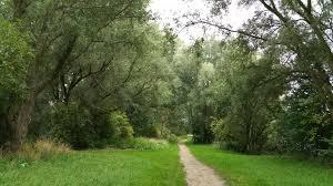 Wandeling doorheen het provinciaal domein De Gavers (5 km) - Effen Weg vzw