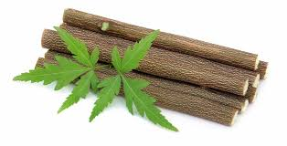 Image result for Neem toothbrush