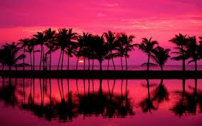 palm trees sunset tumblr. Palm Trees Sunset Tumblr Widescreen 2 HD Wallpapers E