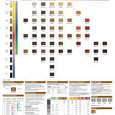 Redken Color Gels Lacquers Color Chart Redken Color Gels Conversion Chart Best Picture Of Chart