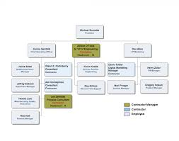 43 Skillful Co Director Org Chart