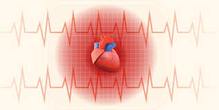 Body Mass Index Bmi Calculator Myheart
