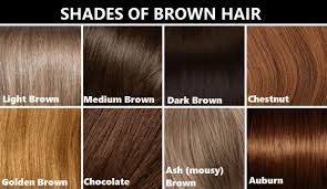 Light Brown Hair Color Chart World Of Label Brown Hair
