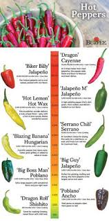 225 Best Chili Pepper Types And Info Images In 2019