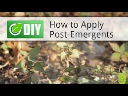post emergent herbicide. Fine Post How To Apply PostEmergent Herbicide Weed Killers And Post Emergent Y