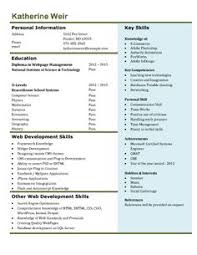 Entry Level Resume Template Microsoft Word 10 Best Free Resume Templates Microsoft Word Images Free