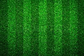 green grass soccer field. Green Grass Soccer Field Background, Stock Photo Colourbox
