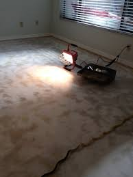 Glue Removal From Concrete Floor Image 4014462348