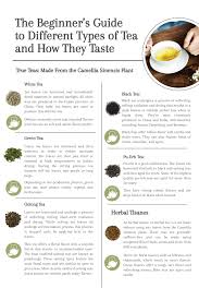 The Beginners Guide To Different Types Of Tea And How They