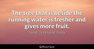 Saint Quotes Inspiration Saint Teresa Of Avila Quotes BrainyQuote