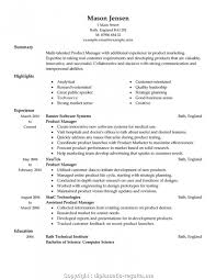 Downloadable Product Manager Resume Format Download Product