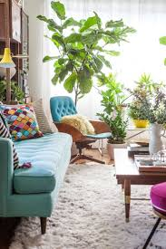217 best Indoor Plants | Inspiration images on Pinterest | Colours ...