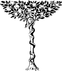 Image result for the serpent tempting eve clip art black and white