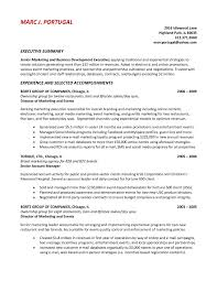 Summary Resume Example