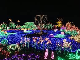 Bellevue Botanical Garden Holiday Lights Garden Dlights At Bellevue Botanical Garden One Word