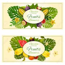 garden banners. Tropical Garden Fruits Banners With Vector Carambola, Mangosteen, Durian, Figs, Guava,