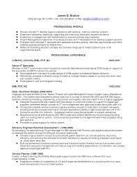 It Support Engineer Resume Sample Free Resume Example And