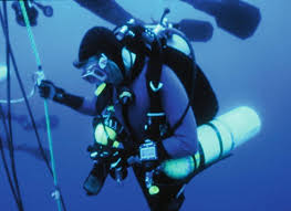 Diving Degree Of Difficulty Chart 2016 Recreational Scuba Diving And Snorkelling Springerlink