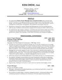 Resume Architect Sales Architect Lewesmr