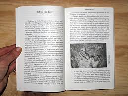 history of animals an essay on negativity immanence and dom history of animals an essay on negativity immanence and dom