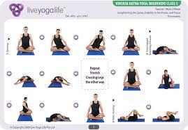 vinyasa hatha beginners cl 5