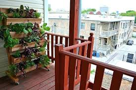 apartment vegetable garden.  Garden Apartment Vegetable Garden Balcony Ideas Throughout Apartment Vegetable Garden Y