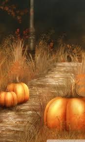 fall wallpaper iphone 6 pumpkin. Wonderful Wallpaper Mobile WVGA 53 Throughout Fall Wallpaper Iphone 6 Pumpkin L