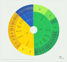 Sunburst Chart Generator 44 Types Of Graphs And How To Choose The Best One For Your