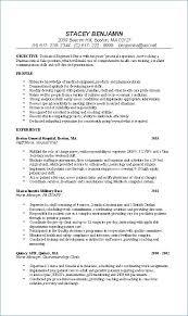 Example Of Rn Resume Mesmerizing Sample New Grad Rn Resume School Nurse Resume Examples Resume Sample