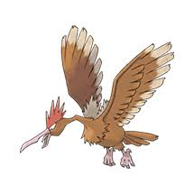 Pokemon Spearow Evolution Chart Pokemon Go Spearow 21