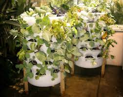 Small Picture 6 Stylish Systems to Keep Your Organic Vegetable Garden Growing