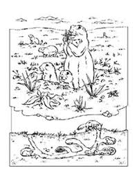 Small Picture Prairie Dog pattern Use the printable outline for crafts