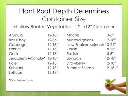 Herb Root Depth Chart Pin On Gardening For Food