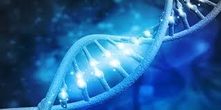 آزمایش ژنتیک چیست؟ - آزمایشگاه پاتوبیولوژی مایسا