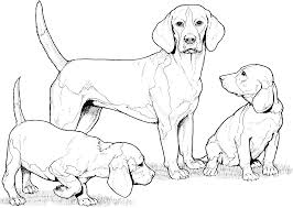 Small Picture Pound Puppies Coloring Pages Gallery Of Rainbow Berit Coloring