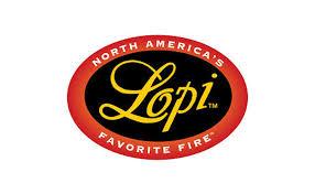 Best Gas Fireplace Insert Brands Top U2013 ThesrchinfoFireplace Brands