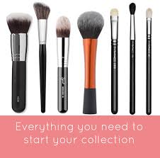 choose right eye shadow brushes your plete guide to the best makeup brushes for beginners
