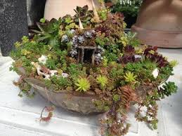 Backyard business: Mini structures create tiny homes in fairy gardens