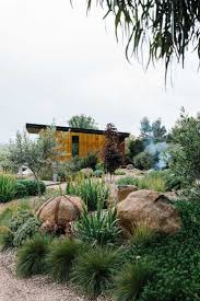 A garden which nestles into the surrounding landscape, mixing native and  exotic plantings for foliage